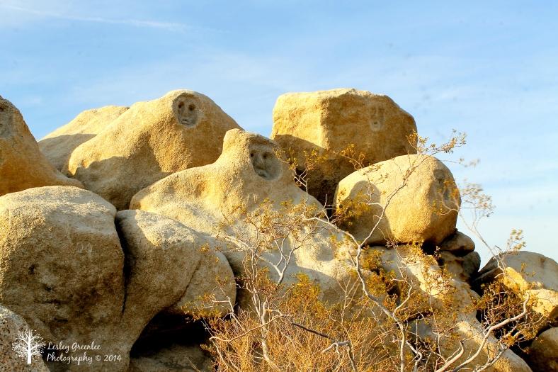 Faces in Rocks