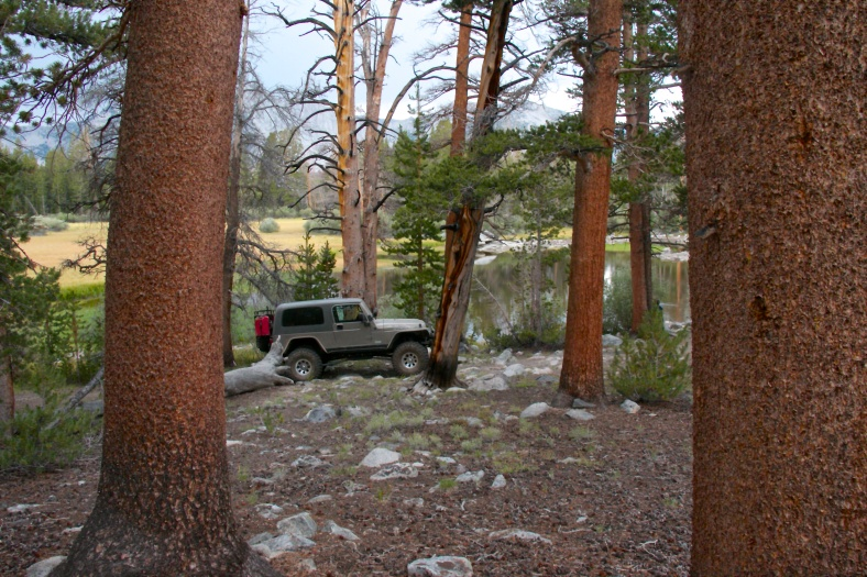 Our jeep nestled amongst the trees at the lake