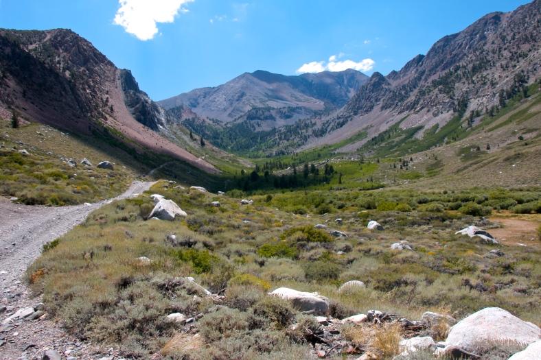 Beautiful scenery on trail